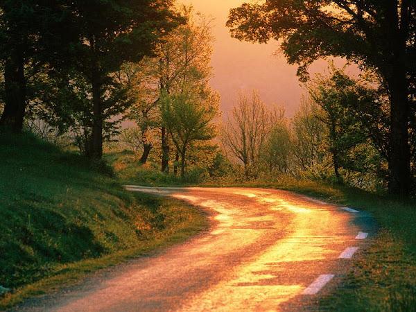 Conhecimento:Conheceres a verdade, e ficaras, conhecendo o caminho, .