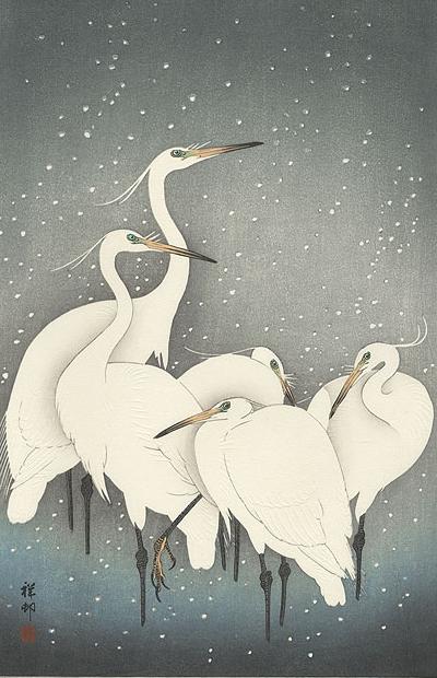 """Carte"" de Kara / Magic Whale - Page 3 Image+2"