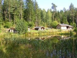 My Finnish Summer