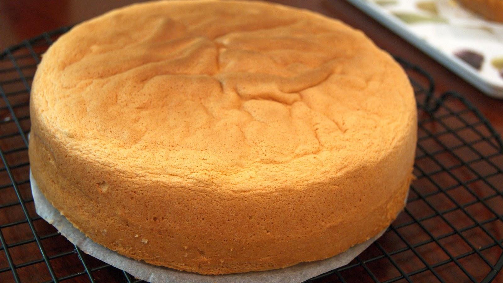 Cake Design Recette Genoise : Mon projet de gateau Arc-en-Ciel partie 1 : je choisis une ...
