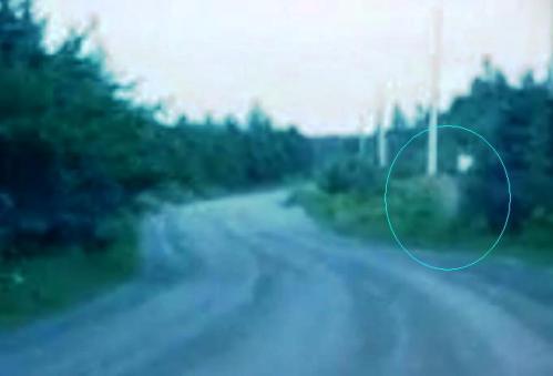 http://1.bp.blogspot.com/_AoprKPDWOLE/TS97jzs49JI/AAAAAAAAC7A/QZ6dBE-s584/s1600/1.jpg
