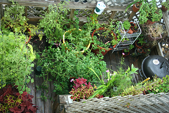small-space-urban-balcony-garden