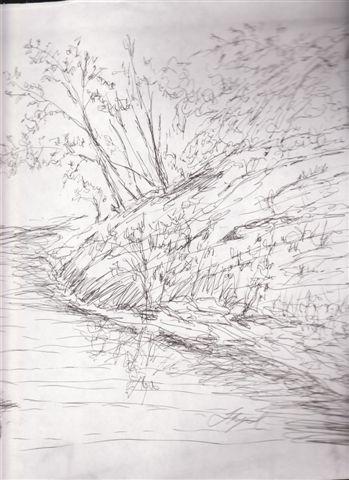 [River1.jpg]