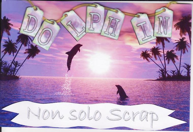 Dolphin non solo scrap