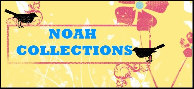 Noah Collections