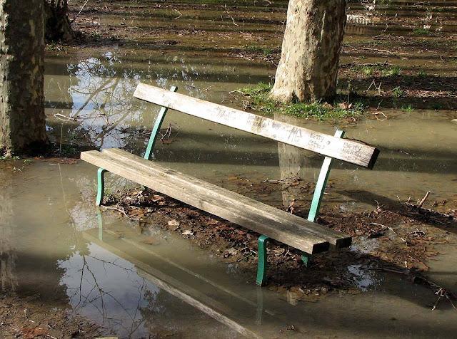 Bench after the rain, Villa Fabbricotti, Livorno