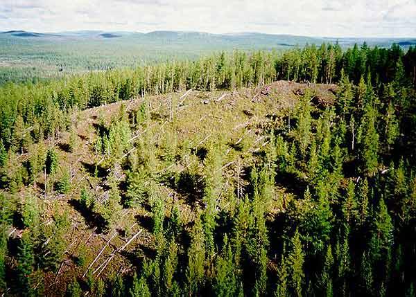 Los mayores impactos contra la Tierra