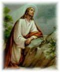 Paroquia Bom Jesus no Horto das Oliveiras, pertenço ao serviço da igreja