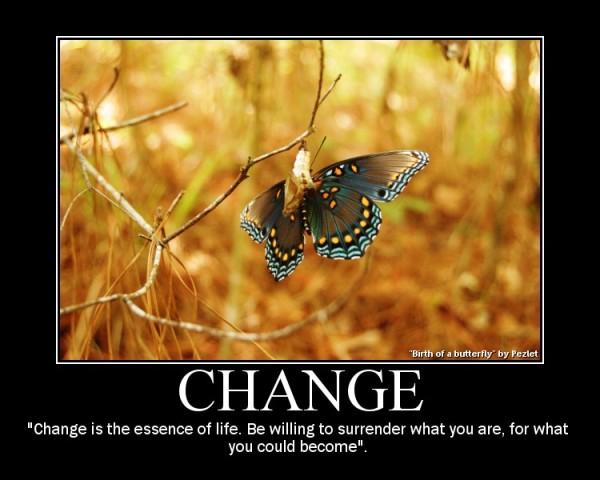 http://1.bp.blogspot.com/_ArQxwOiaRgE/THt3N8Q06pI/AAAAAAAAAYE/N6RBf0U9z50/s1600/butterfly+chage.jpg