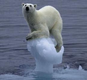 http://1.bp.blogspot.com/_ArZeHyQkL6M/S6yRheItz5I/AAAAAAAAAJE/P51YICqP-P0/s320/global-warming-and-kyoto-protocol_2.jpg