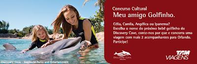 Concurso cultural meu amigo golfinho