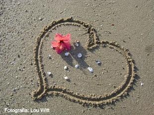 Meu amor eterno à Ilha!!!