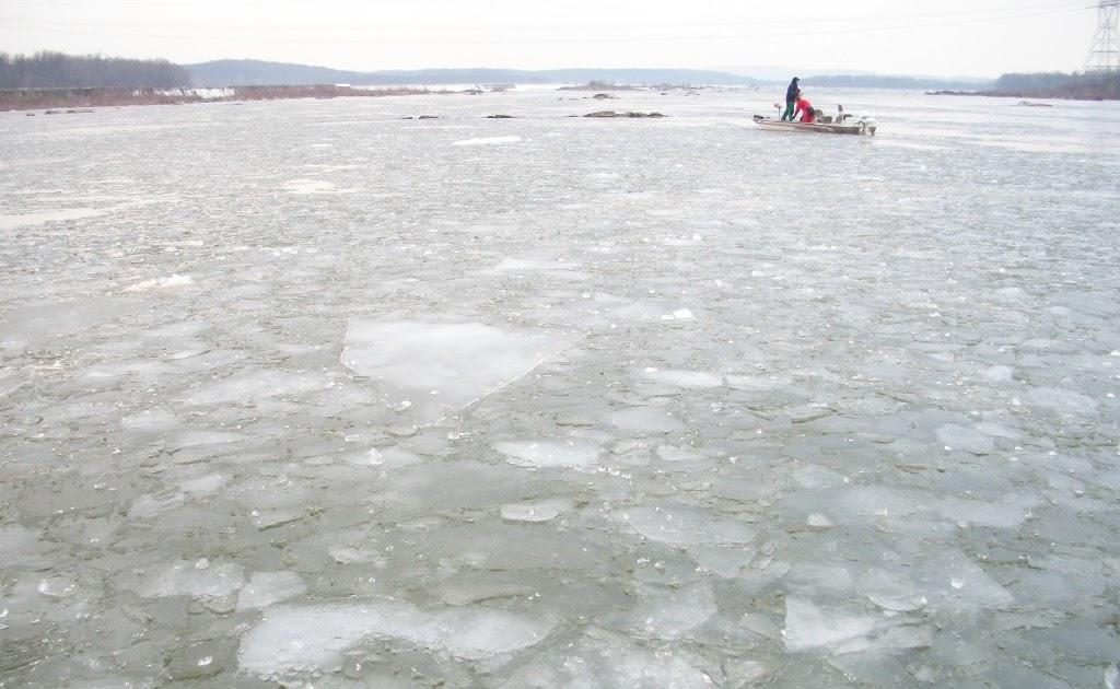 Susquehanna river fishing report for Pa fishing report
