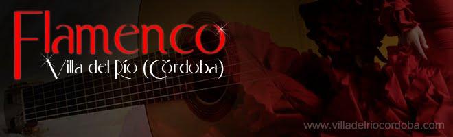 Flamenco en Villa del Rio