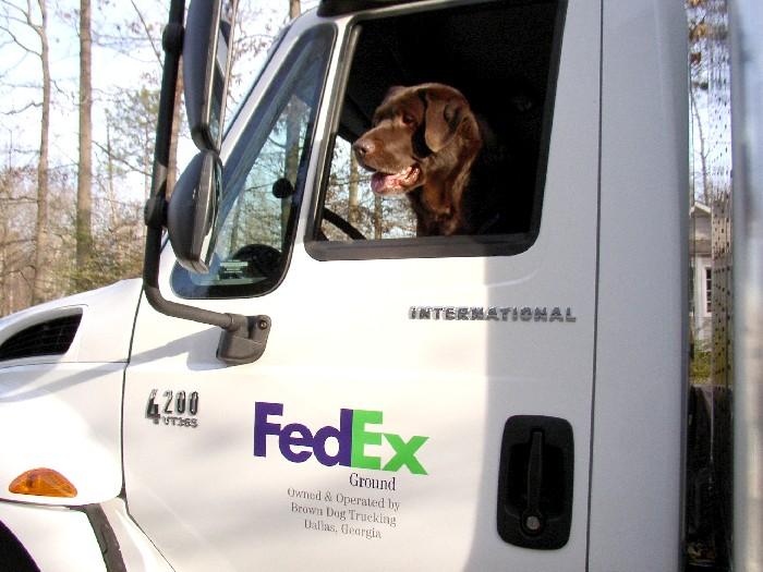 The Original Brown Dog of Brown Dog Trucking, Inc.