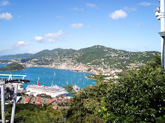 View of St. Thomas from the Sky Rail