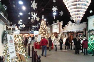 festival of trees & eaton's christmas display