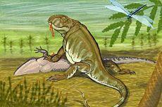 230px-Pantelosaurus.jpg