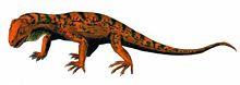220px-Trilophosaurus_BW.jpg