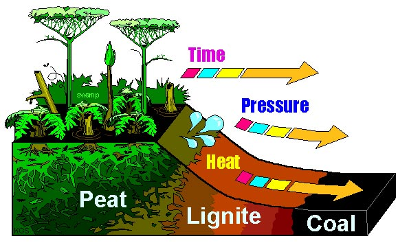 diagram explaining photosynthesis