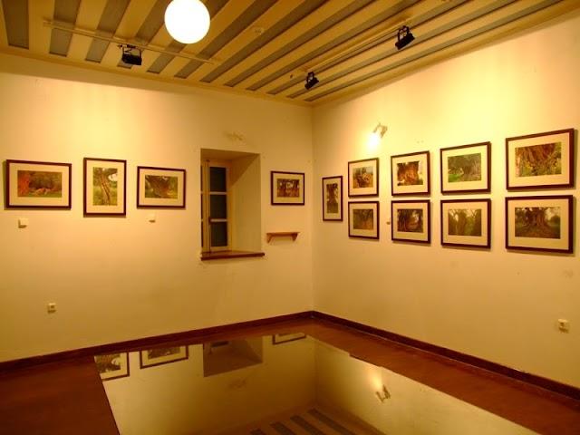 'Ελιές της Ελλάδας, γλυπτα της Φύσης' στο Λαογραφικό Μουσείο