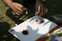 Membongkar Rokok