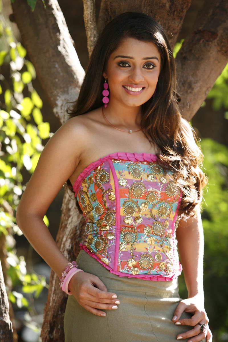 Actress Hot Hot Photos: Very Very Hot Photos Of Nikitha