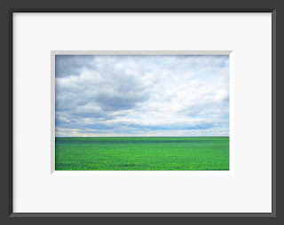 A framed photo of lush spring grass stretches as far as the eye can see into the horizon with a rain promising spring sky overhead.