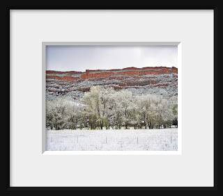 Framed photo of snowy cottonwoods line a creek at the bottom of the towering western mesa pointing to a water source and creating layers of subtle color.