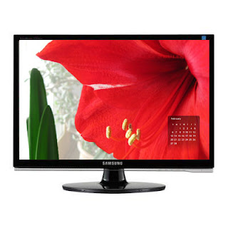 Desktop wallpaper calendar for 02-11 red amaryllis flower