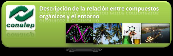 Descripción de la relación entre compuestos orgánicos y el entorno