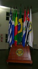 Porta-bandeiras