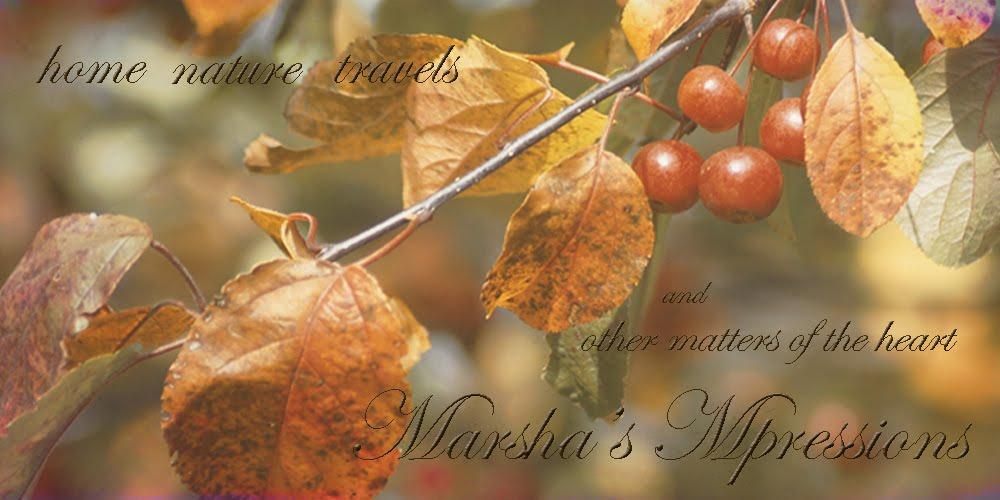 Marsha Mpressions