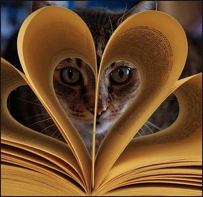 Най-добрият разказвач ви гледа между страниците