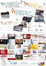 Competicion de Salom y descenso de Castilla y Leon