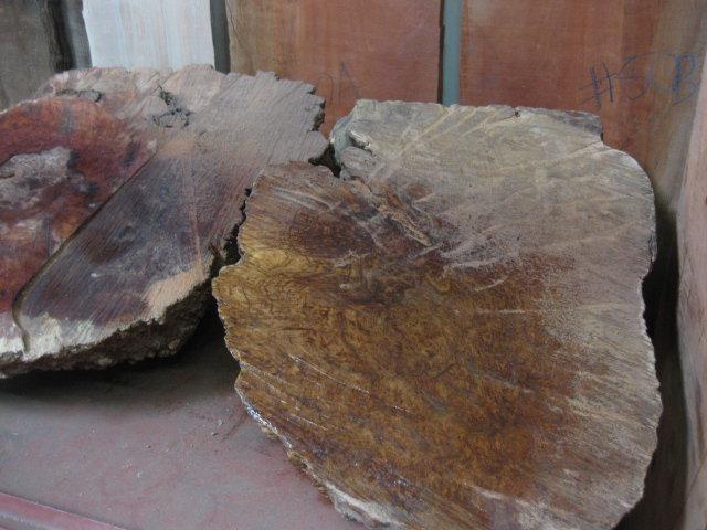 Tropical Exotic Hardwoods Coolibah Burl Bass Guitar By