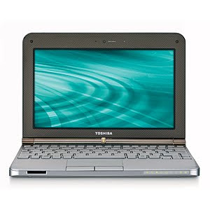 Toshiba Mini NB205-N310BN