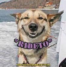 """""""Bbauuu!!!"""", sono """"RIDOLINI"""", amico dei cani e dei gatti di questa allegra famiglia di esperantisti"""