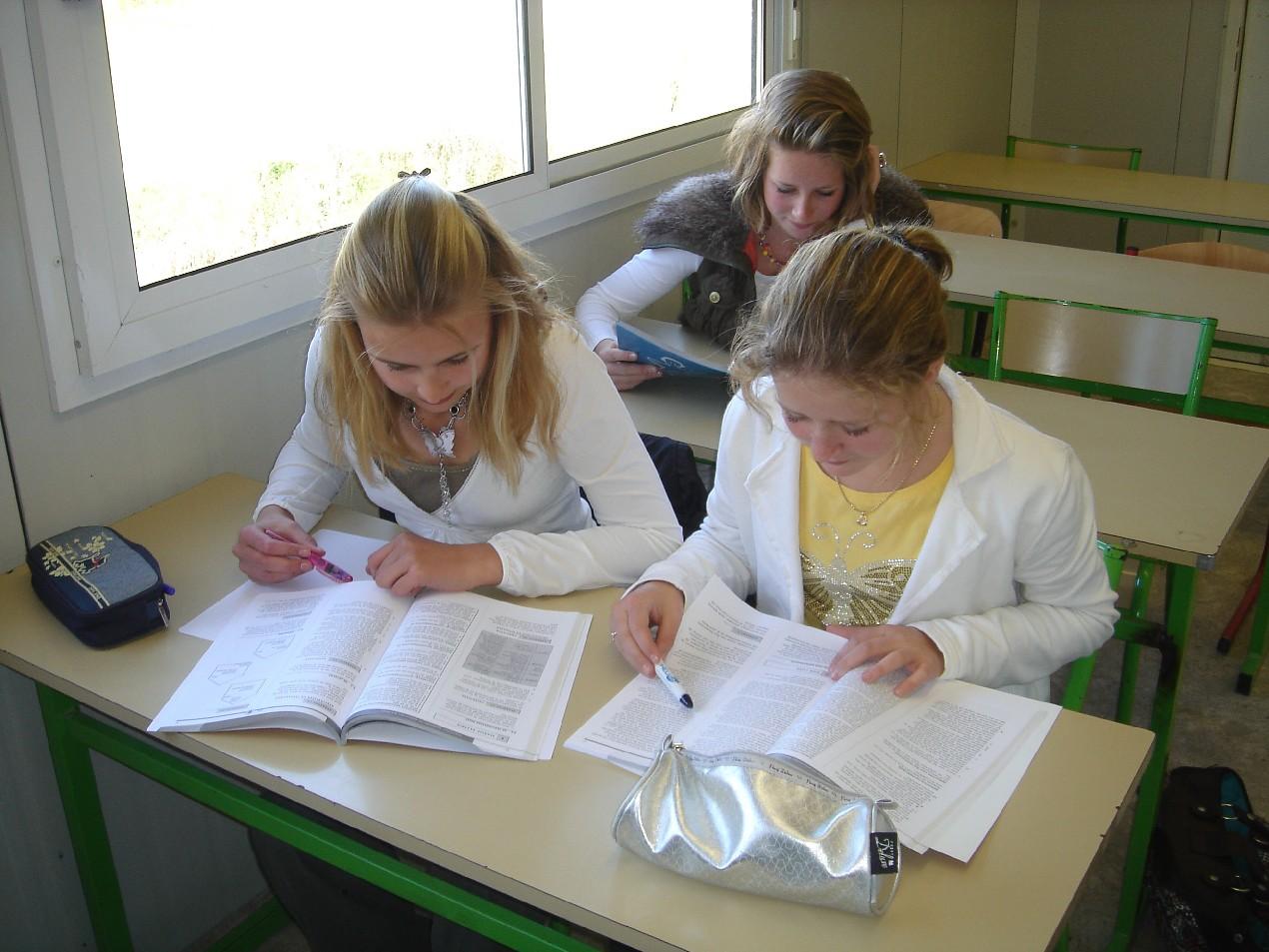 Study Dutch in Hanoi - Home | Facebook