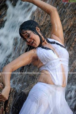 Nisha Kothari hot pictures