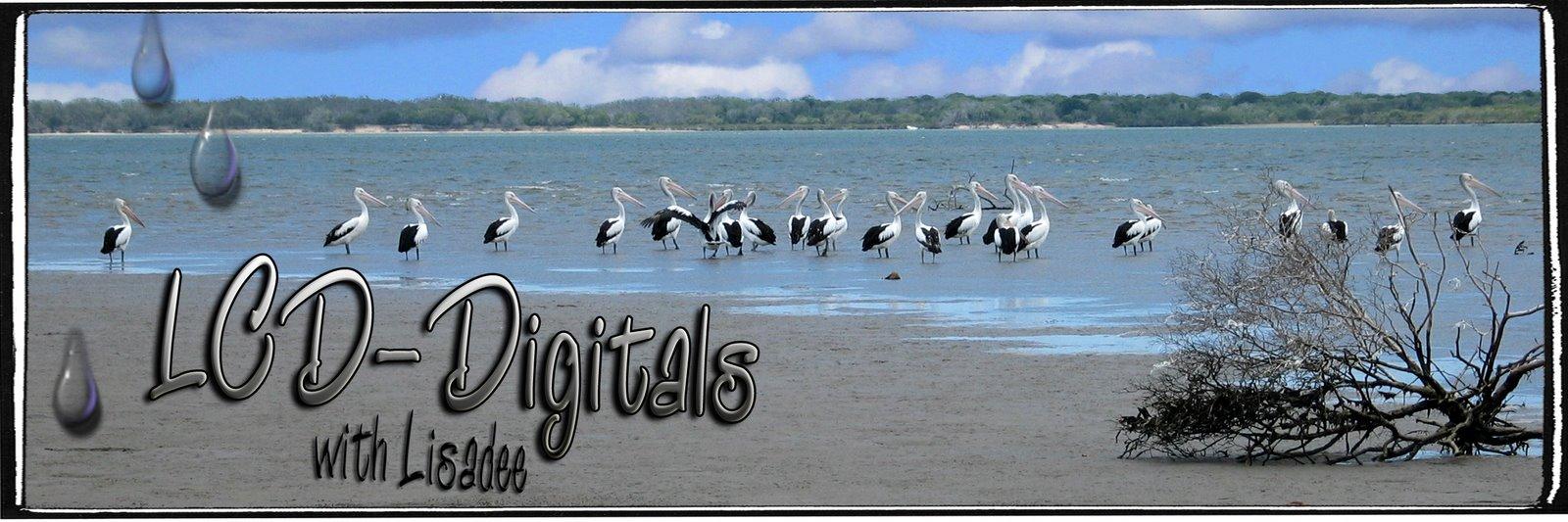 LCD-Digitals
