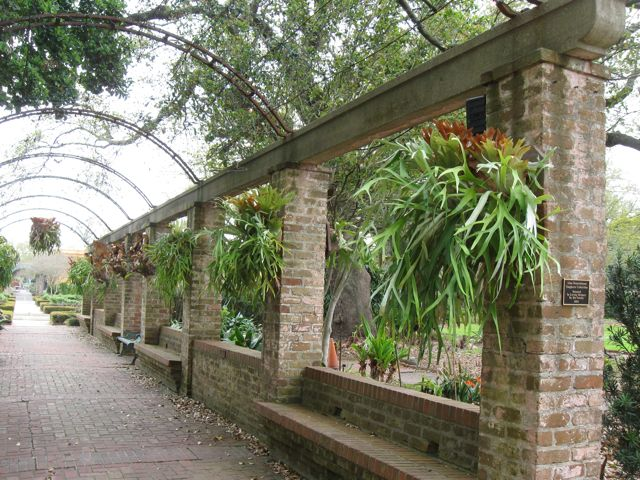 I Was Particularly Taken With This Staghorn Fern Lined Walkway. These  Striking Ferns Apparently Do Quite Well In New Orleansu0027 Climate.