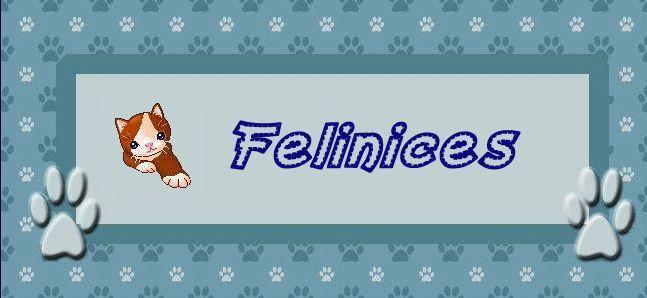 Felinices