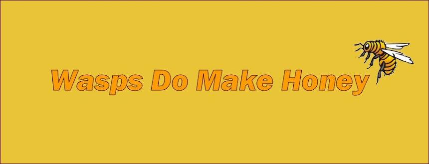 Wasps do make Honey!
