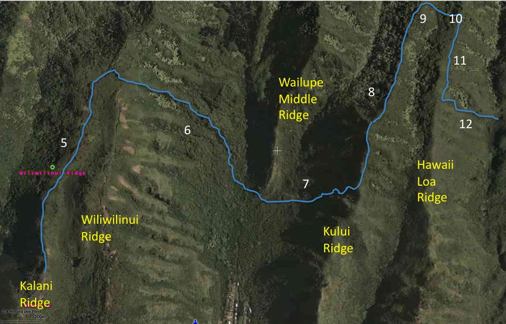 Ridge Hike Honolulu Hike up Kului Ridge Partway