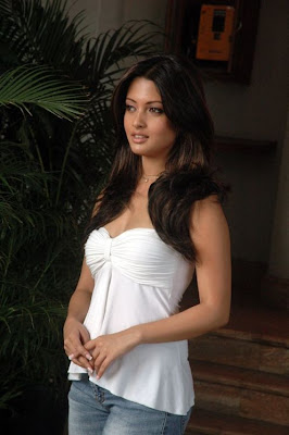 Riya Sen Hot Pictures, Riya Sen Hot pics, Riya Sen Hot photos, Riya Sen Hot images, Riya Sen Hot wallpapers, Riya Sen in sexy bikini, Riya Sen Hot in photoshoot, Riya Sen