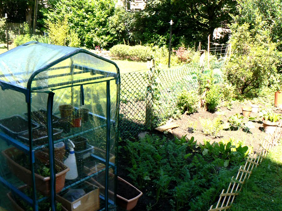 searching for spaces Gardening for beginners