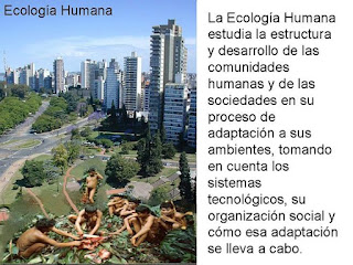 Definición de ecología humana