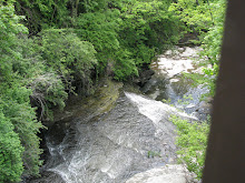 Cascadilla Creek