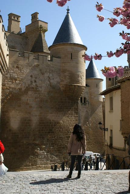 castillo+palacio+olite